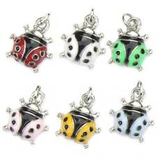 Ladybird Charms