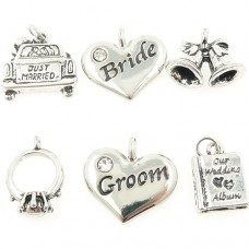 Wedding Theme Charms with Bride and Groom